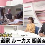 Japanese TV